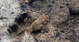 Podczas prac przy obwodnicy znaleziono niewybuchy